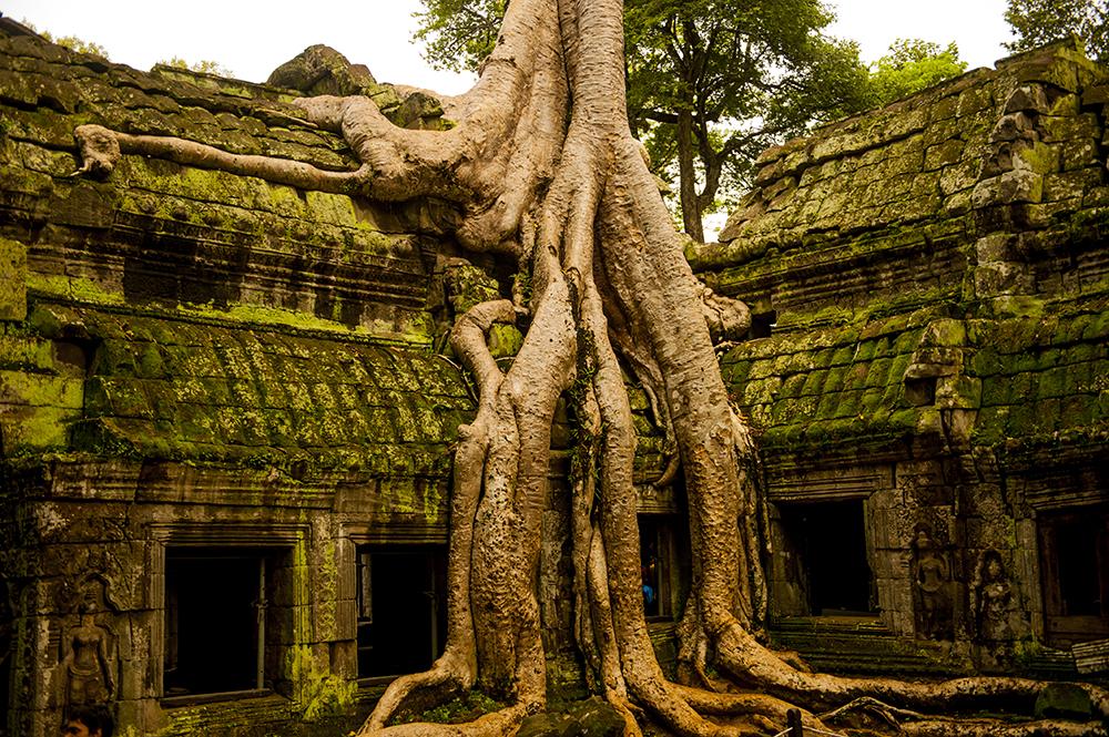 cambodia78.jpg