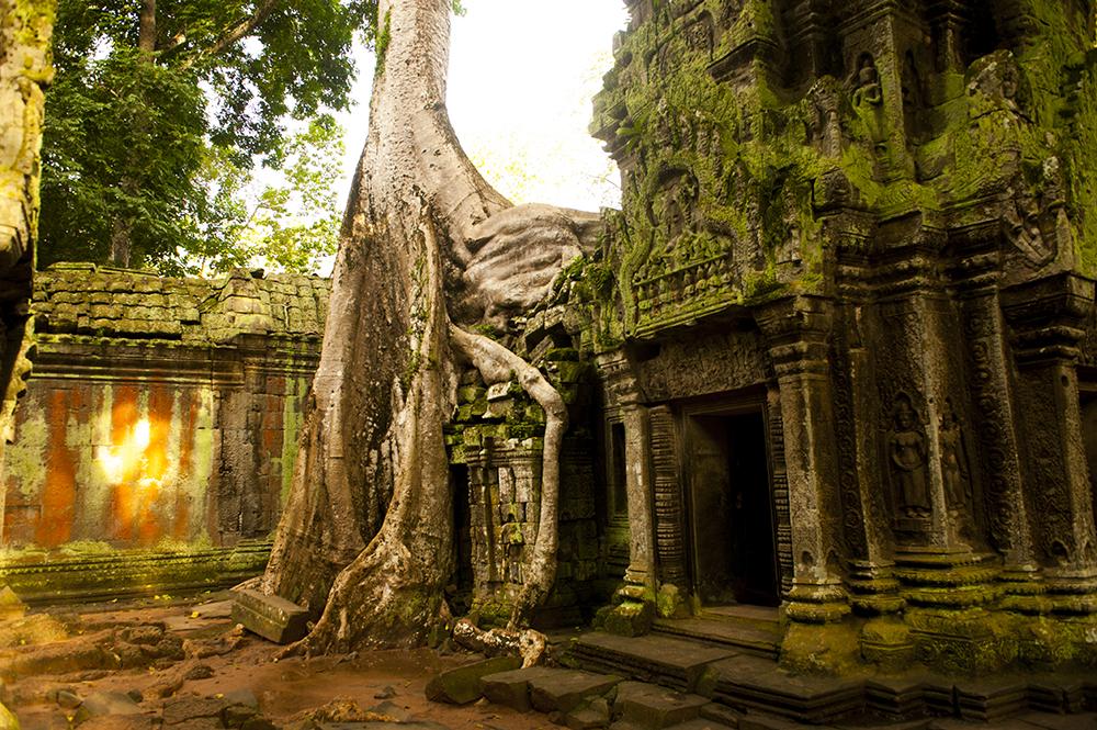 cambodia80.jpg