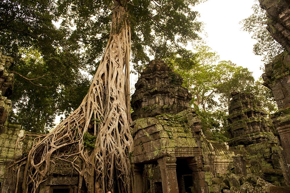 cambodia86.jpg
