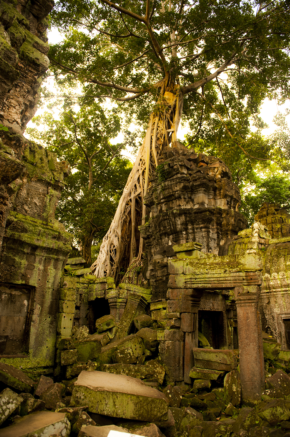 cambodia88.jpg