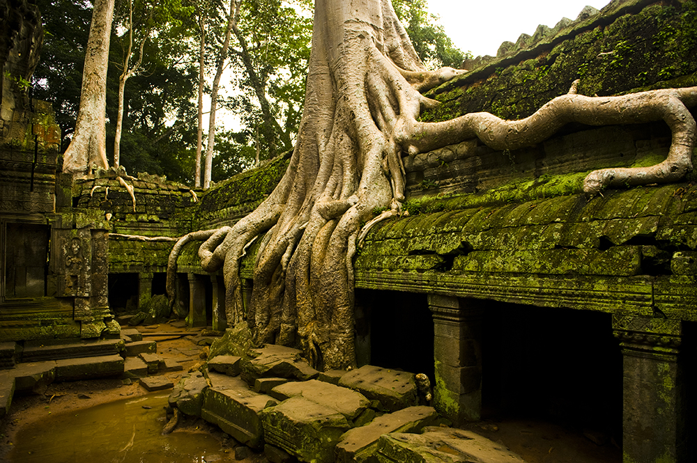 cambodia89.jpg