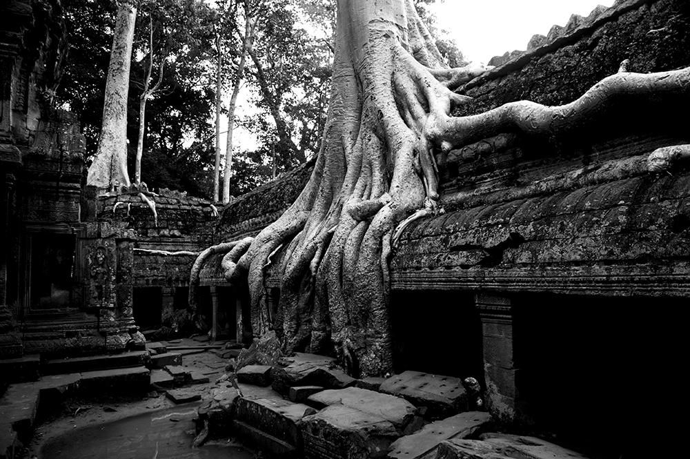 cambodia90.jpg